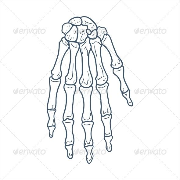 GraphicRiver Bones of Hand 6696457