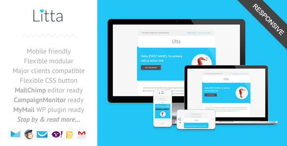 Litta - Clean Responsive Newsletter Template - Newsletters Email Templates