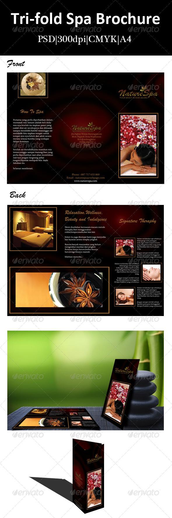 GraphicRiver Tri-fold Spa Brochure 6703615