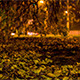 The Nature Of The City At Night 1 - VideoHive Item for Sale