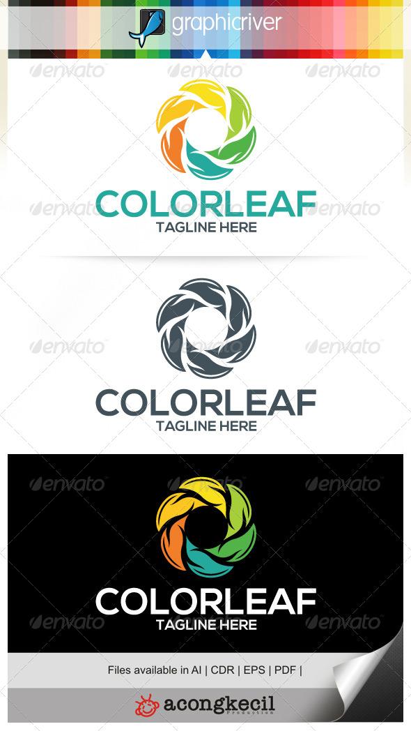 GraphicRiver Color Leaf V.2 6706014
