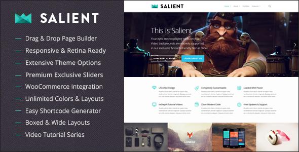 Salient - Best WordPress Themes for Photographers
