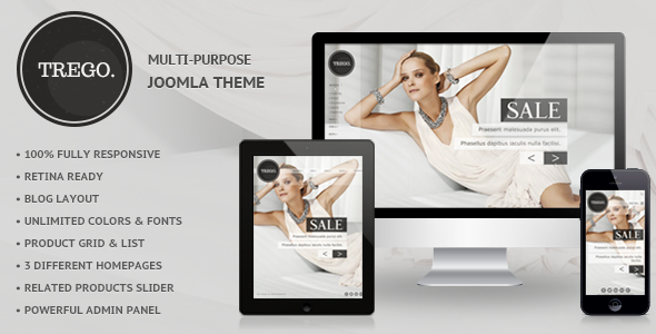 01 preview.  large preview - Trego - Premium Responsive Joomla Theme
