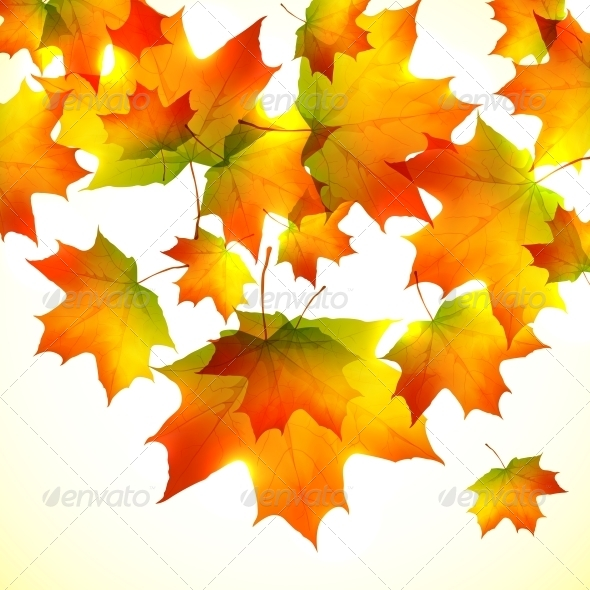 GraphicRiver Autumn Falling Down Foliage Background 6715239