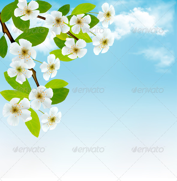 GraphicRiver Background with Blossoming Tree 6717252