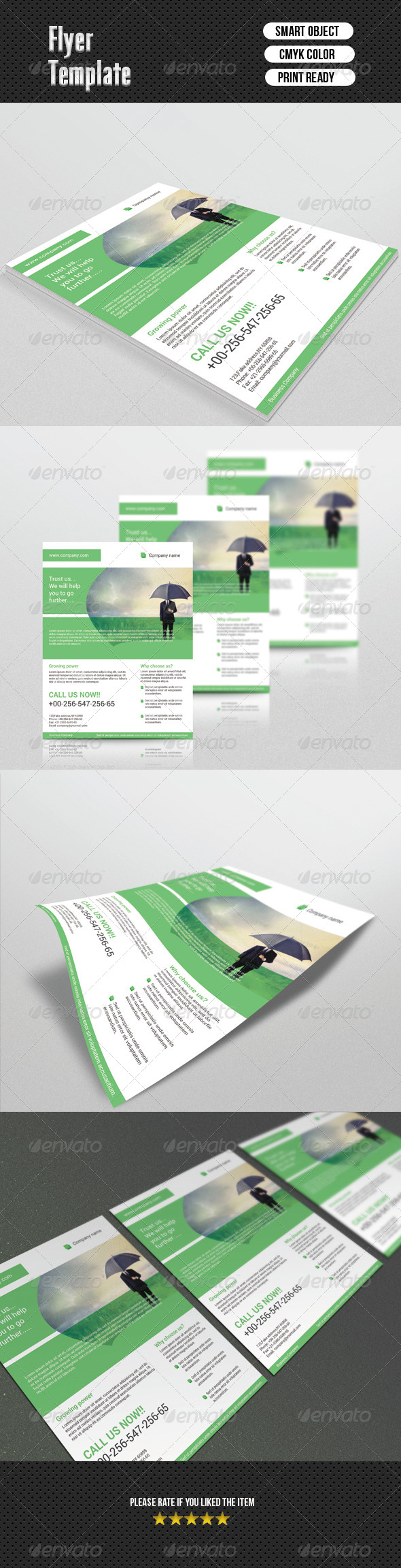 GraphicRiver Corporate Flyer Template 6721543