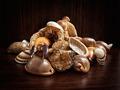 Sea leftovers - PhotoDune Item for Sale