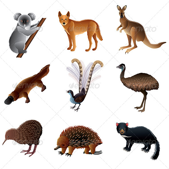 GraphicRiver Australian Animals Set 6724827