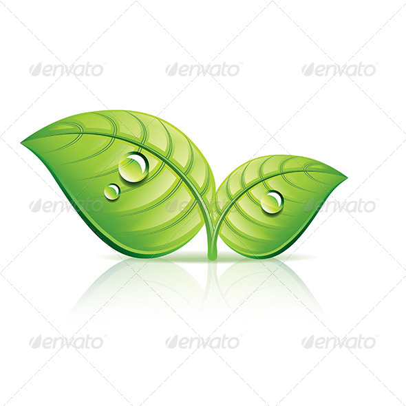 GraphicRiver Green Leaves Ecology Icon 6725197