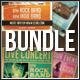 Alternative Flyers Bundle - GraphicRiver Item for Sale