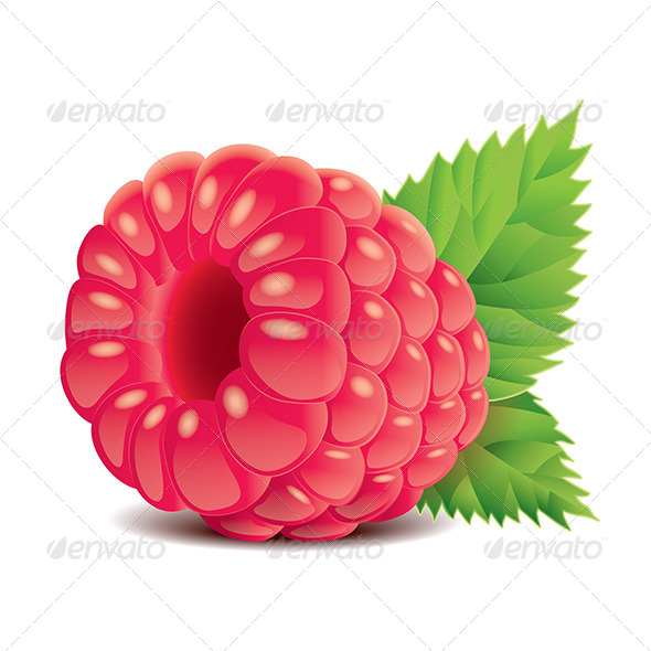 GraphicRiver Raspberry 6725267