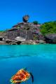 Hawksbill Turtle at Similan Islands - PhotoDune Item for Sale