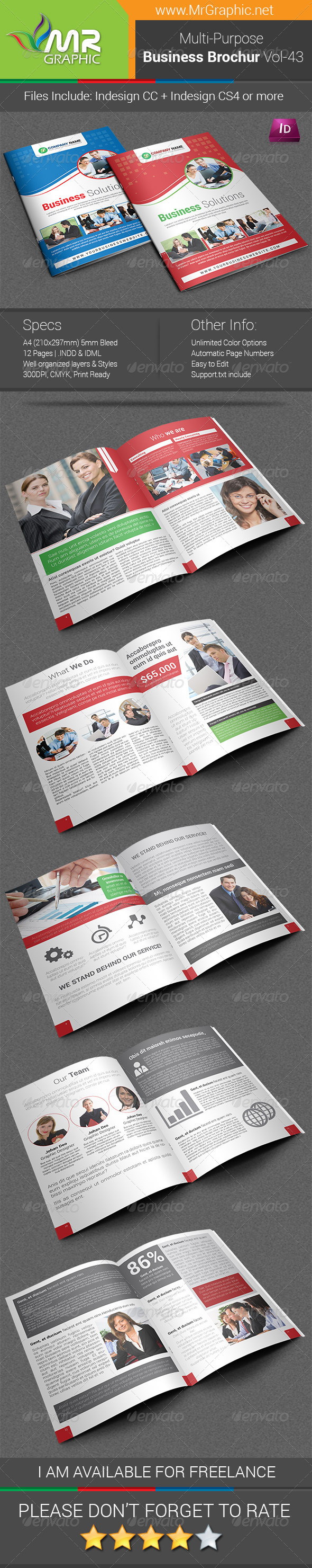 GraphicRiver Multipurpose Business Brochure Template Vol-43 6737550