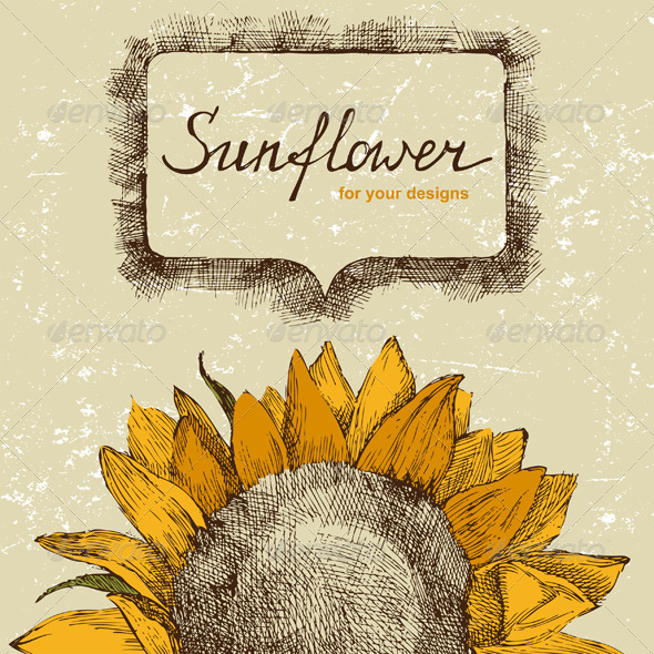 GraphicRiver Hand Drawn Background with Sunflower 6743453