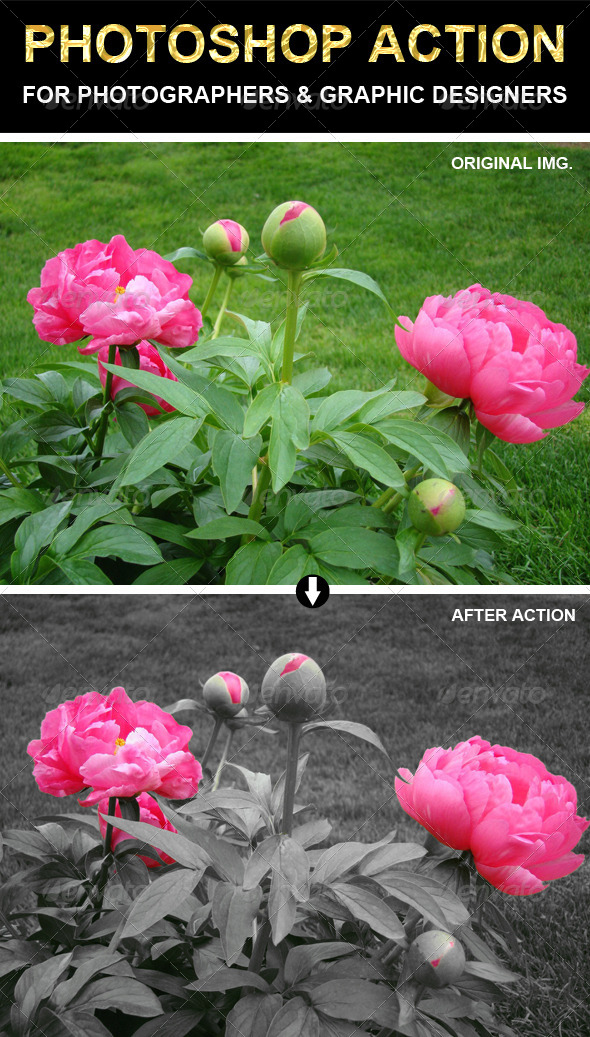 GraphicRiver Photoshop Action 6745401