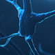 Synaps Neuron - VideoHive Item for Sale