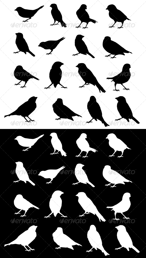 Sparrow Silhouettes Set