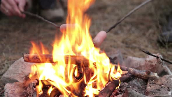 Download Girl is Preparing Sausages on Campfire nulled download