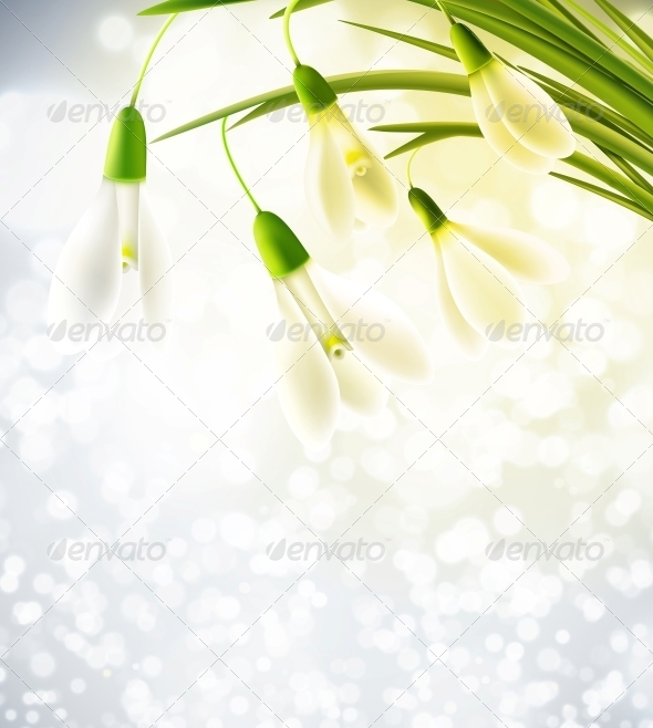 GraphicRiver Background with Snowdrops 6753721