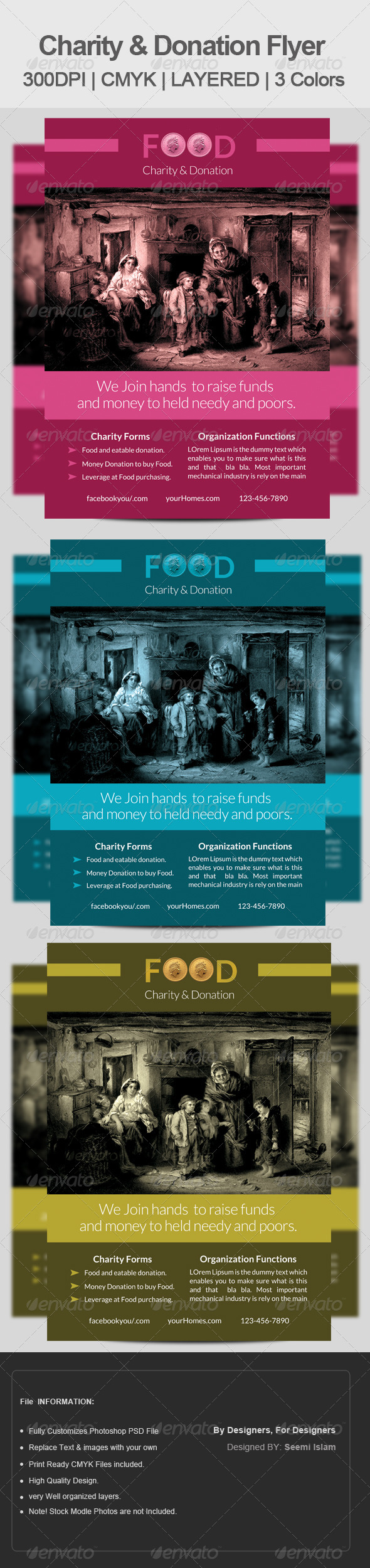 GraphicRiver Charity & Donation Flyer Template 6757035