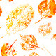 Seamless Autumn Leaves Pattern - GraphicRiver Item for Sale