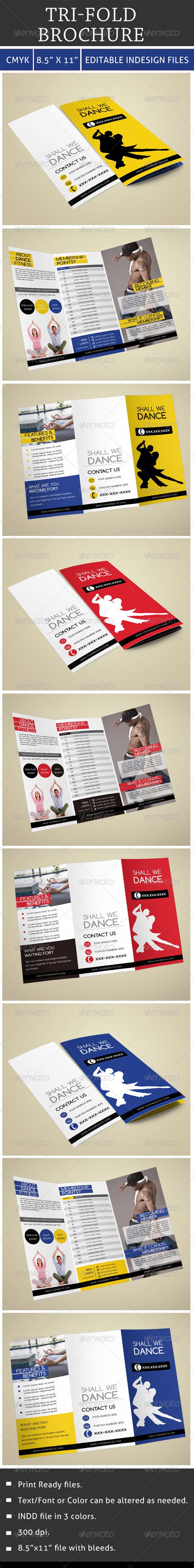 GraphicRiver Tri-Fold Brochure 6763683