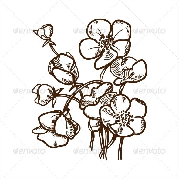 GraphicRiver Daisy Flower 6767877