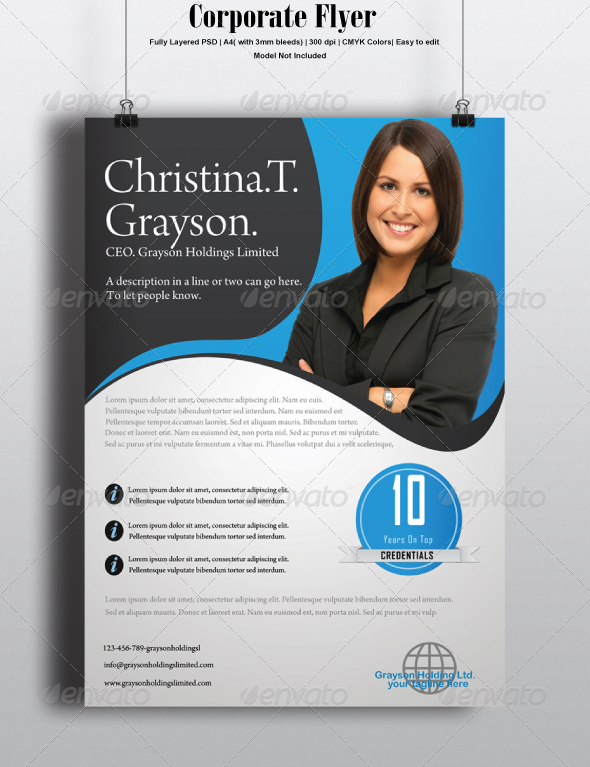 GraphicRiver Corporate Flyer 6767893