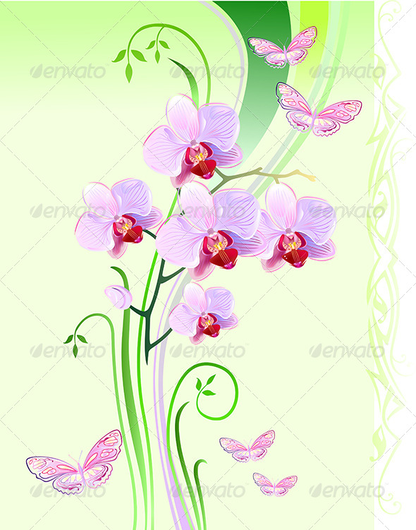 GraphicRiver Orchids and Butterflies 6780220