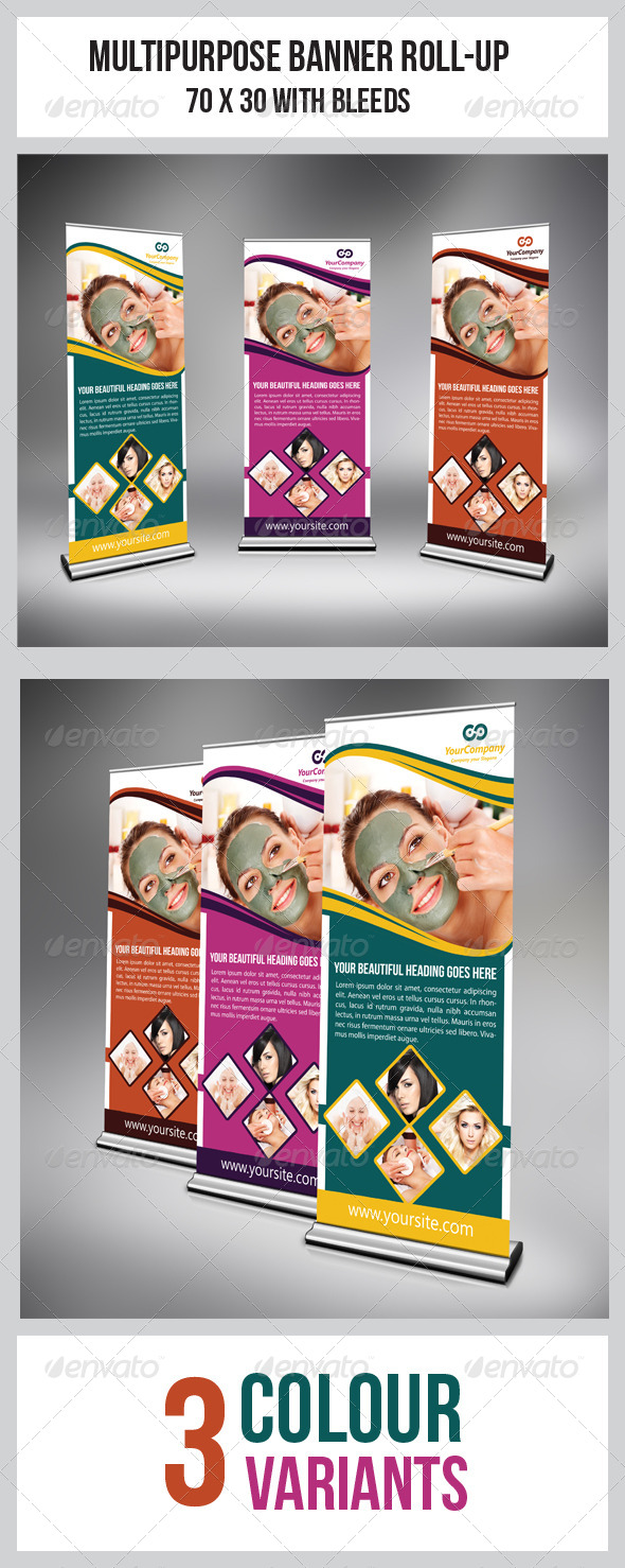 GraphicRiver Multipurpose Business Roll-Up 6770001