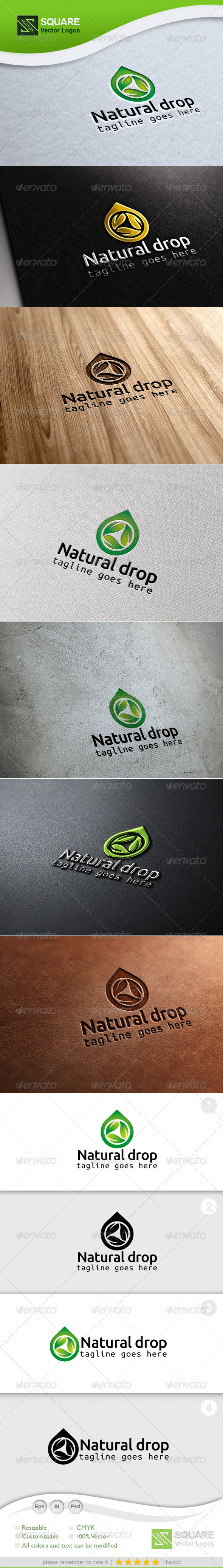 Leaf, Drop Vector Logo Template