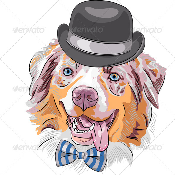 Cartoon Hipster Dog Australian Shepherd - Animals Characters