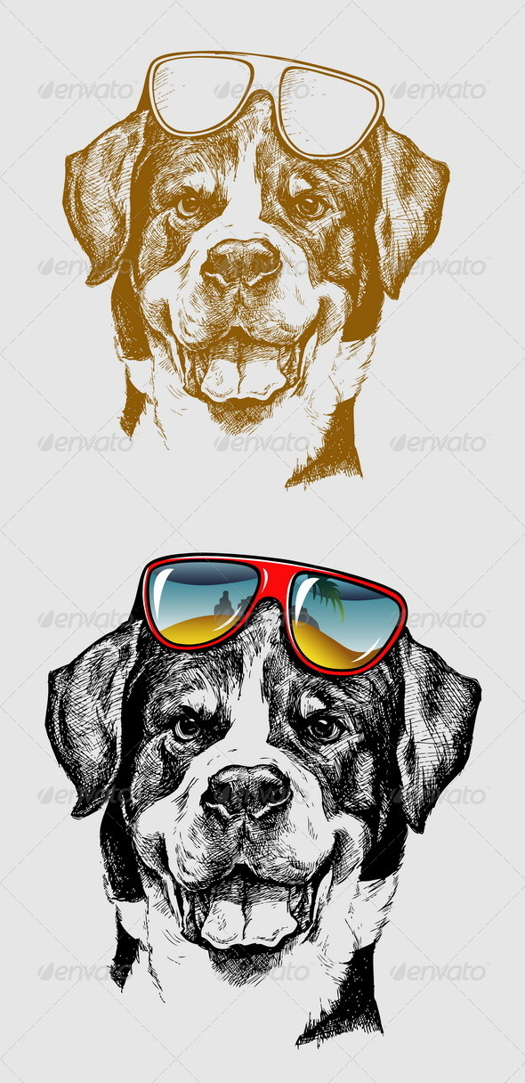 GraphicRiver Cool Dog Illustration 6785539