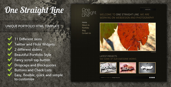 ThemeForest One Straight Line unique portfolio template 142906