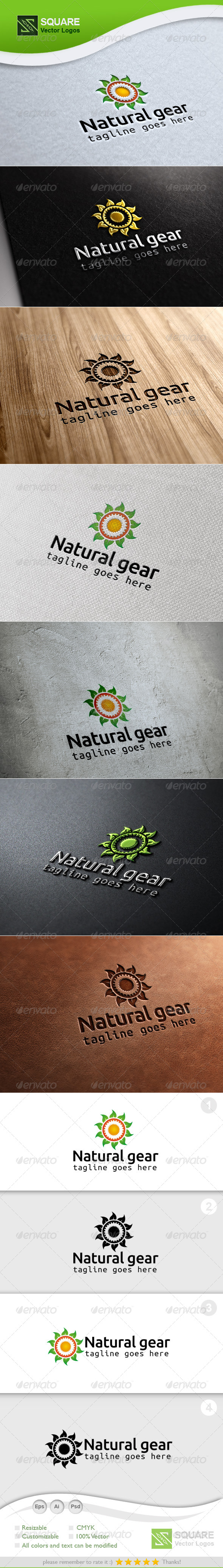 GraphicRiver Leafs Gear Vector Logo Template 6789553