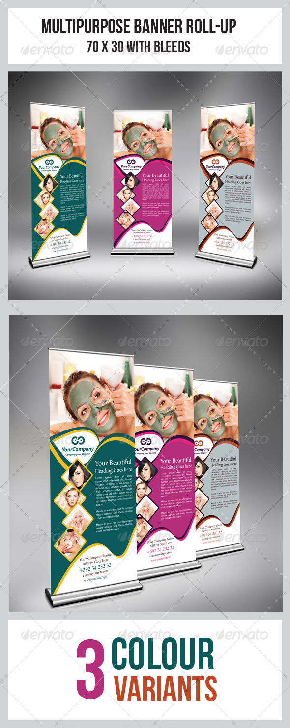 GraphicRiver Multipurpose Business Roll-Up 6782093