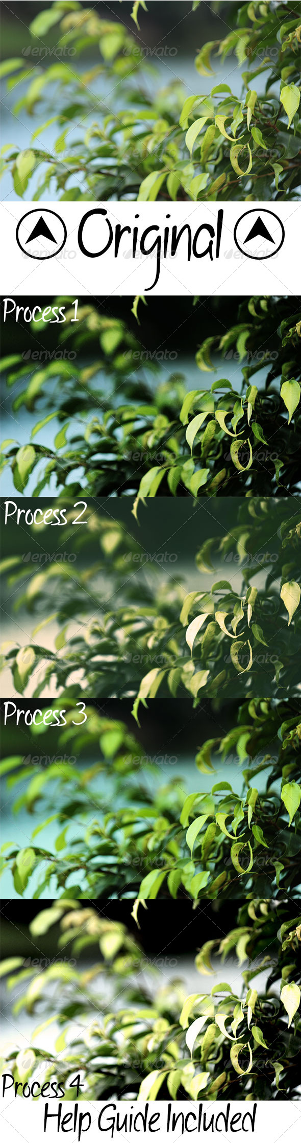 GraphicRiver Nature Photographic Effects 6790502