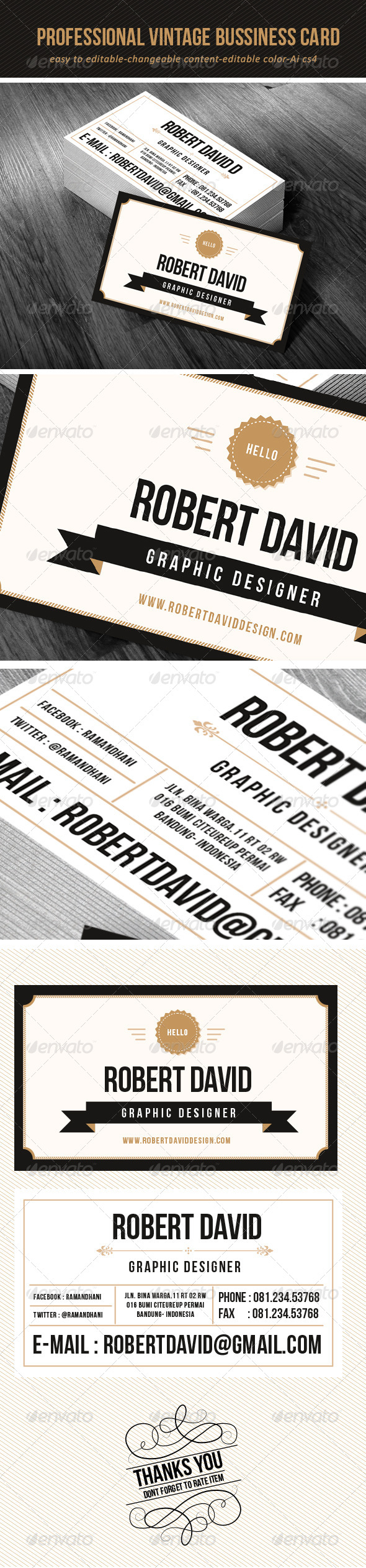 GraphicRiver Professional Vintage Bussiness Card 6772670