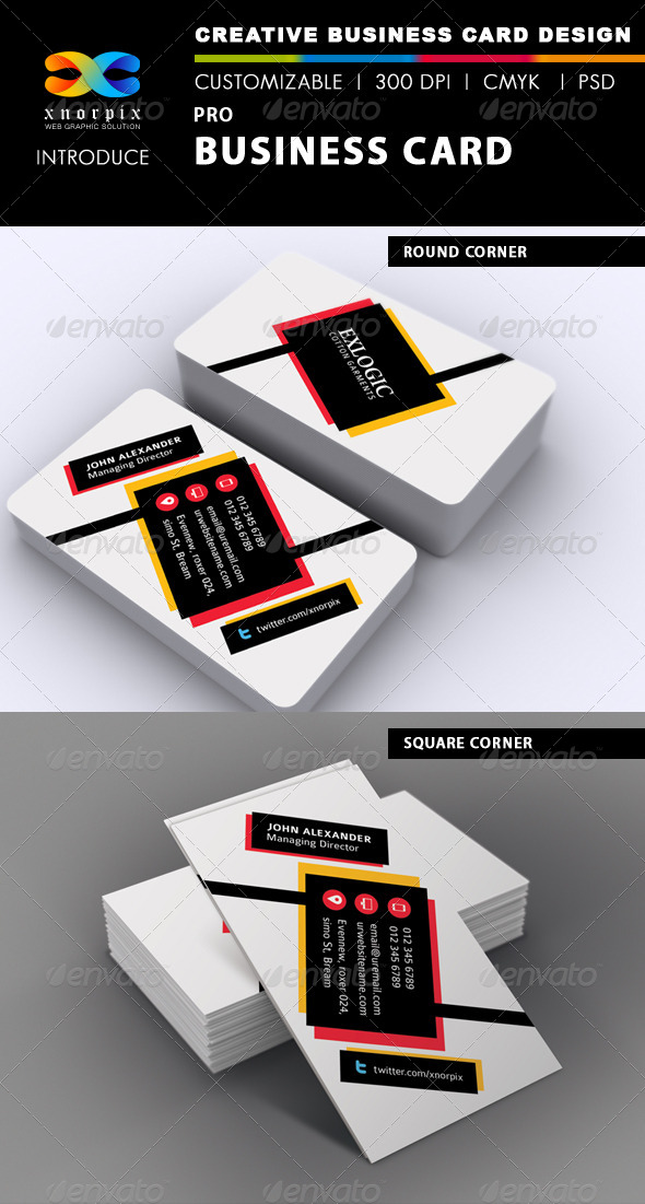 GraphicRiver Pro Business Card 6796112