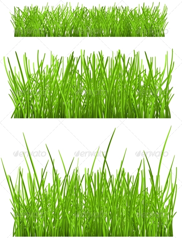 GraphicRiver Green Grass 6798161