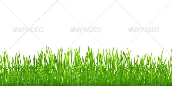 GraphicRiver Seamless Grass 6799201