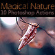 10 Magical Nature Adobe Photoshop Actions - GraphicRiver Item for Sale