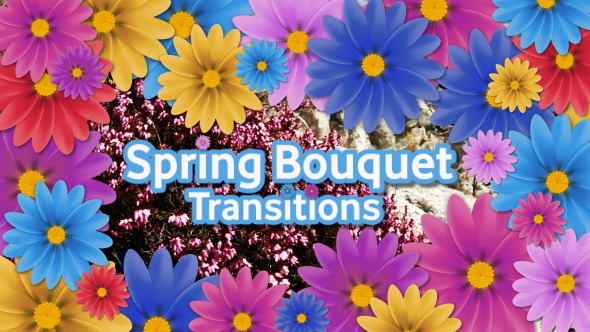 Spring Bouquet Transitions