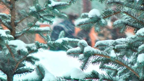 Christmas Tree in Snow 2 items