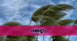 Element - Wind