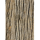 Tileable Fissured Wood Texture