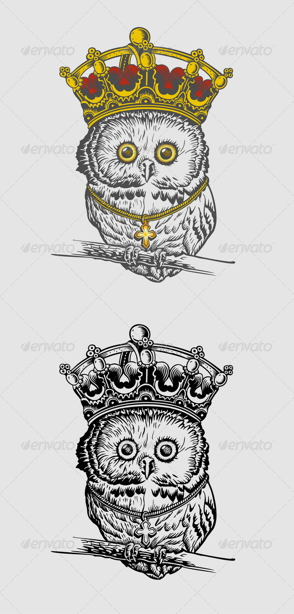 GraphicRiver The King Owl Hand Drawing 6811720
