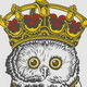 The King Owl Hand Drawing - GraphicRiver Item for Sale