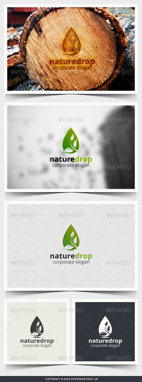 GraphicRiver Nature Drop Logo Template 6811913