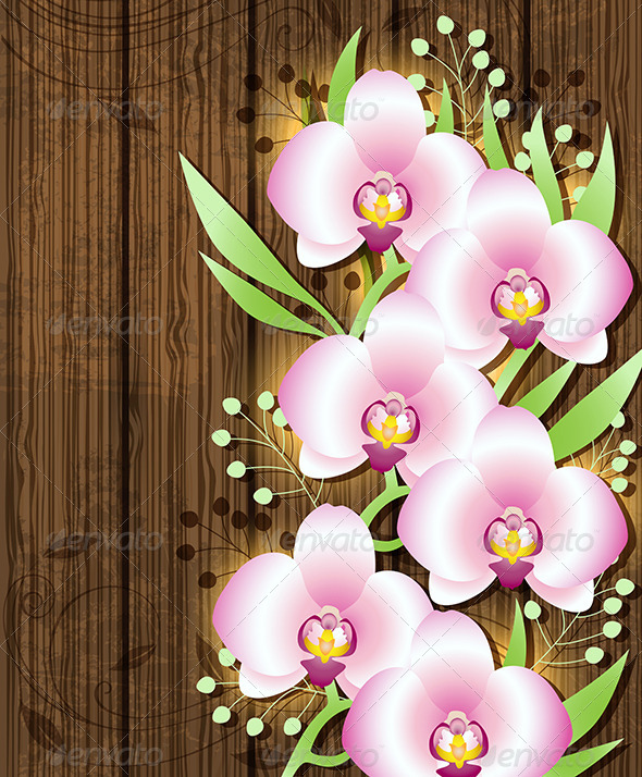 GraphicRiver Wooden Background with Pink Orchids 6812616